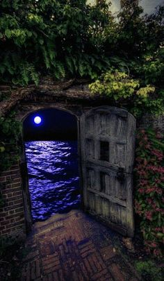 Moonlight reflecting over the ocean through ancient doorway. Beautiful Gif, Beautiful Places, Beautiful Pictures, Fantasy Kunst, Fantasy Art, Gifs, Fantasy World, Oeuvre D'art, Portal