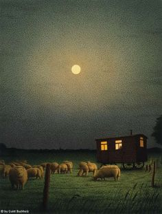 Sheep grazing at night: photo by Quint Buchholz