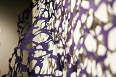 lizz aston: Exploding Lace View