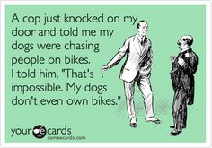 just for #puppy and #bike #laughs