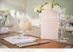 elegant-farm-wedding-blush-greyton_029