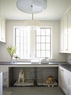Jul 2019 - Designing around family pets. See more ideas about Dog rooms, Animal room and New homes. Mudroom Laundry Room, Farmhouse Laundry Room, Laundry Room Design, Country Farmhouse, French Country, Laundry Room Island, Dog Room Design, Country Laundry Rooms, House Design