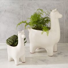 Save the drama for your llama. Made from ceramic earthenware, these whimsical planters are a fun way to work some greenery into your space. We love how they look with trailing plants and clustered succulents.
