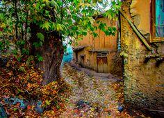 Autumn trip to Iran