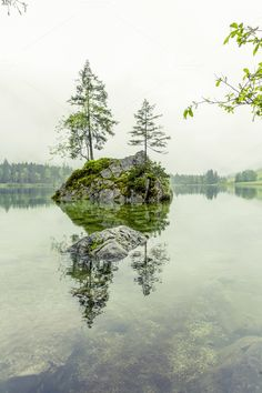 hintersee mountain lake bavaria - Nature
