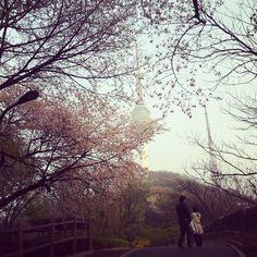 Spring romance in Seoul.
