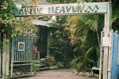 Blue Heaven in Key West, FL.  One of my favorite restaurants!
