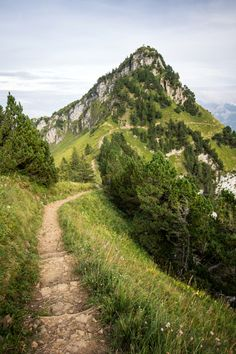 This picture reminds me of hiking with my father in the Alps.  Lederhosen, hiking sticks and a song in our hearts...I love to go a wondering, along the mountain paths, and as I go, I love to sing, my knapsack on my  back...Thank you dad for many wonderful