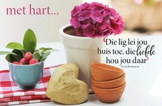 Afrikaans, Van, Inspirational Quotes, Life, Life Coach Quotes, Vans, Inspiring Quotes, Afrikaans Language, Inspire Quotes