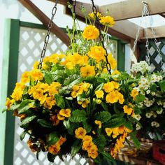 Wow!  Awesome gardening and DIY patio tips!!!