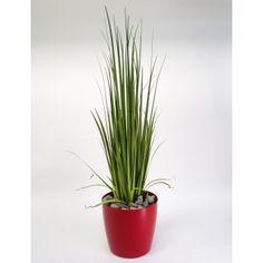 photo plantes artificielles haut gamme montreal
