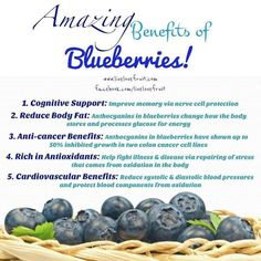 Mmm blueberries