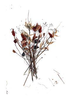 november bouquet (mary jo hoffman)