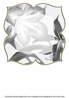 Amarylis Silver Large Blooms 8inch Insert Panel on Craftsuprint - Add To Basket!