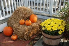 Pumpkins and mums on the porch of a Provincetown home.