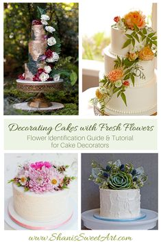How to clean and prepare fresh flowers to safely decorate cakes. Tutorial and flower identification guide for determining which flowers are non toxic. Cake Decorating Icing, Cake Decorating Techniques, Cake Decorating Tutorials, Fresh Flower Cake, Fresh Flowers, Wedding Sheet Cakes, Christmas Themed Cake, Cake Mix Cupcakes, Birthday