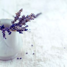 Lavender helps with getting a good night's sleep. See more sleep tips here: http://www.womensforum.com/7-ways-to-get-a-better-night-sleep.html #healthyou #lavender #sleeptip #sleepadvice #lavenderuse #getabettersleep #bettersleep #health #wellness #womensforum
