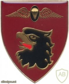 SOUTH AFRICA 44 Para Bde, Freefall Parachute Instructor arm flash, proposed , black center, left Paratrooper, Army & Navy, Africans, Special Forces, Beret, Badges, Cry, South Africa, Military