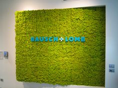 MOSS Wall & Projects: Bausch & Lomb www.themossdesign.com www.verdeprofilo.com #verdeprofilo #MOSS #WallProjects #design #MOSStile