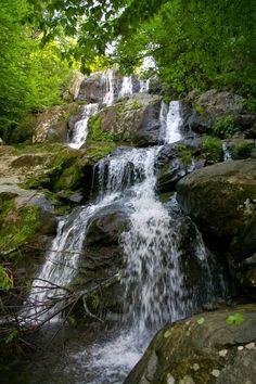 Best trails for seeing Shenandoah National Park's wonders