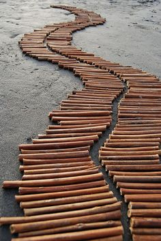 "Andy Goldsworthy - ""Stick-path..."""