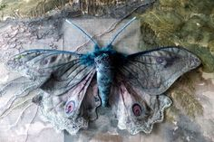 Beautiful Annemieke Mein moth. (Other examples of her work are showcased on this site.)