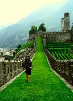 Bellinzona, Switzerland  I hope my feet get to kiss that grass someday.