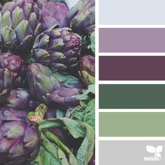 I am Jessica Colaluca a creator of Design Seeds. A color schemes and inspiration site Design Seeds celebrate the hues found in nature and the aesthetic of purposeful living. Palette Design, Nature Color Palette, Colour Pallette, Color Palate, Color Combos, Color Palette Green, Colors Of Nature, Purple Color Schemes, Zen Colors
