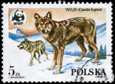 POLAND - CIRCA 1985: A Stamp printed in POLAND shows image of a Wolves and Wildlife Fund Emblem with the description