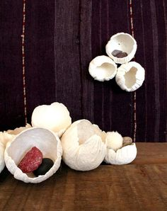 diy project: paper clay barnacles – Design*Sponge