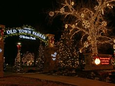 Christmas lights at O'Brien Park in Old Town Parker.