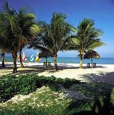 """Naples, Florida - not too far - over an hour away on the other coast across """"Alligator Alley"""""""