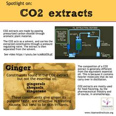 CO2 extracts - what are they and why are they useful?    These extracts are made by passing carbon dioxide through aromatic plant material. The CO2 is in a