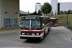 The Orion III Ikarus Articulated Bus -TTC Toronto