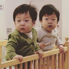 Cute Twins, Cute Boys, Cute Babies, Baby Kids, Korean Babies, Asian Babies, Superman Kids, Korean Tv Shows, Korean Drama Movies