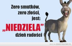 Niedziela – Polish Language, Weekend Humor, Man Humor, Motto, Good Morning, Jokes, Lol, Funny, Pictures
