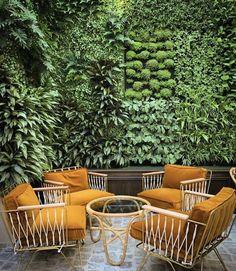 green outdoor...