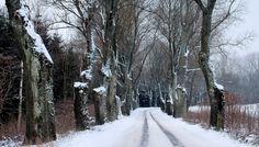 Dziewiszewo zimą