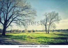 Park of Pateira de Fermentelos by Nelson garrido Silva, via Shutterstock