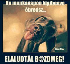 hahahhahaha  :D