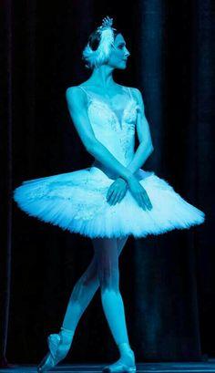 """<< Svetlana Zakharova  # """"Swan Lake"""" from The Bolshoi Ballet tour to London 2016  # Photo © Balletlove. org>>"""