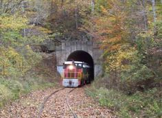 Take This Fall Foliage Train Ride Through Indiana For A One-Of-A-Kind Experience