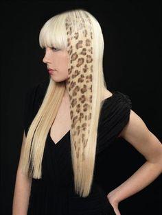 Google Image Result for http://beautybrainz.files.wordpress.com/2011/10/hairprofi.jpg