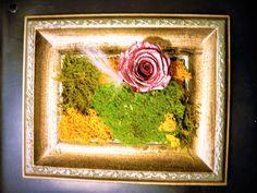 cadre vintage rose stabilisée et mousses Rose Stabilisée, Decoration, Ethnic Recipes, Painting, Vintage, Art, Frames, Board, Decor