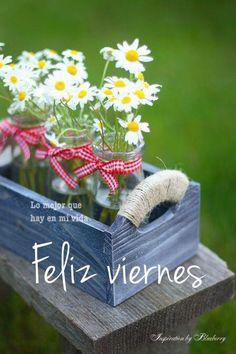 Viernes imagen #10249 - Feliz viernes Tags: Felicidad, Feliz, Flores, Margaritas. Imágenes y fotos de 'Viernes' con frases para facebook, whatsapp y twitter.