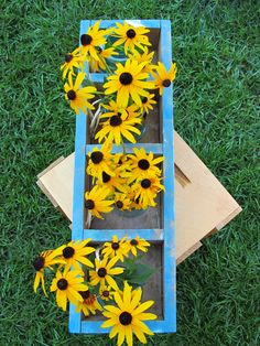 Black Eyed Susans in turquoise wooden box
