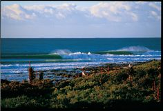 Supertubes, Jeffery's Bay, South Africa. Perfect rights for days.