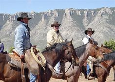 working cattle ranch