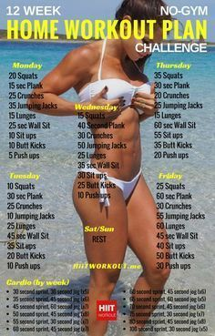 Whether it's six-pack abs, gain muscle or weight loss, this Workout Plan is great for beginners women and men.