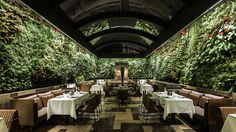 nopa restaurant - Buscar con Google